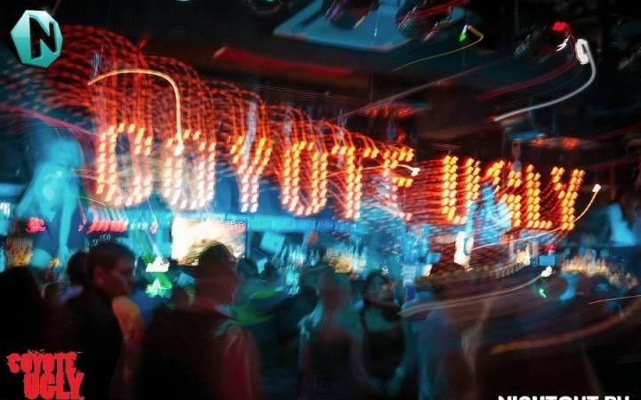 Бар «Гадкий Койот» (г. Новосибирск) — дикий отжиг на барных стойках