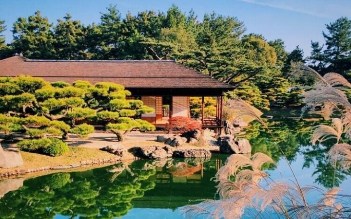 Как поехать в Японию и к чему готовиться еще дома
