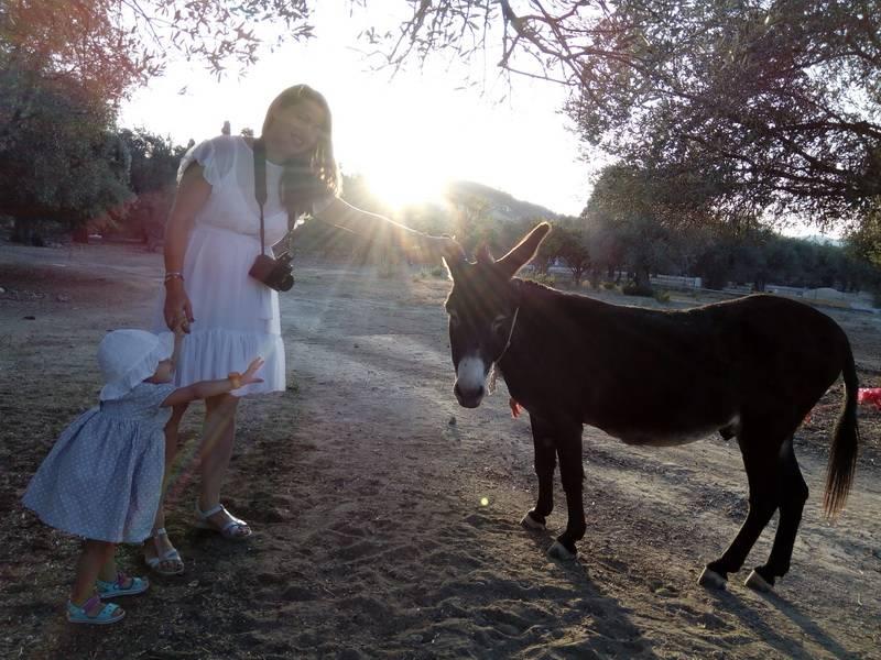 Отдых с детьми Крит или Родос