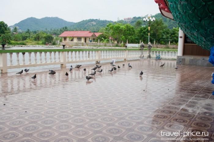 Храм Большого Будды (Wat Phra Yai)