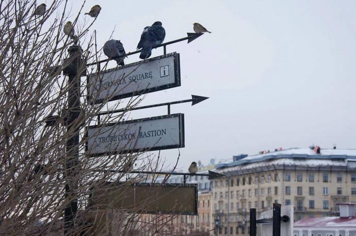 Маршрут прогулки по Питеру. Что посмотреть в Санкт-Петербурге